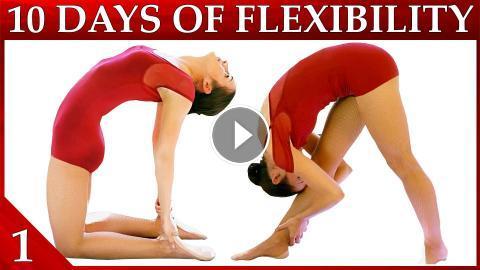 10 day flexibility challenge day 1  basic stretches