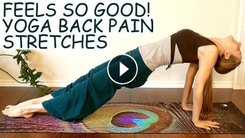beginner yoga for back pain low  upper back stretches
